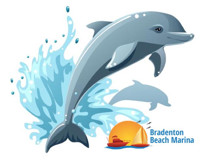 Bradenton Beach Marina Dolphin Tours