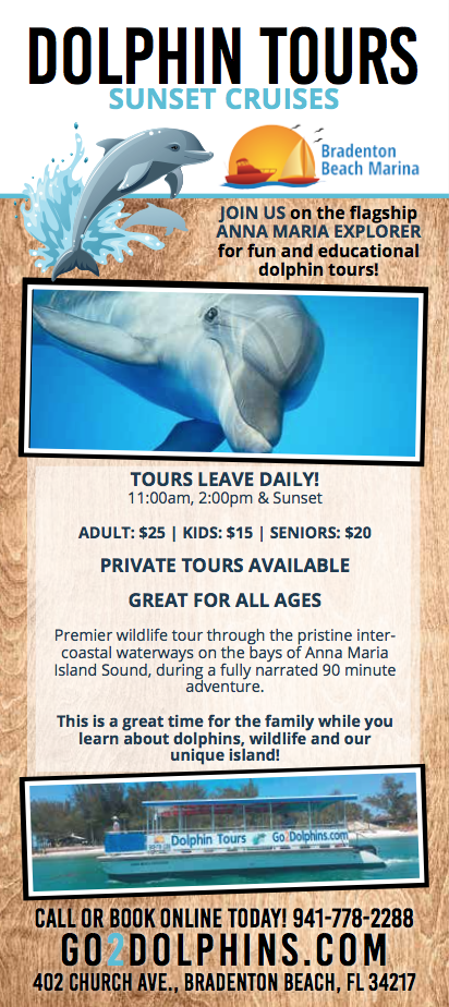 Enjoy Dolphin Tours on Our New 40′ Custom Catamaran